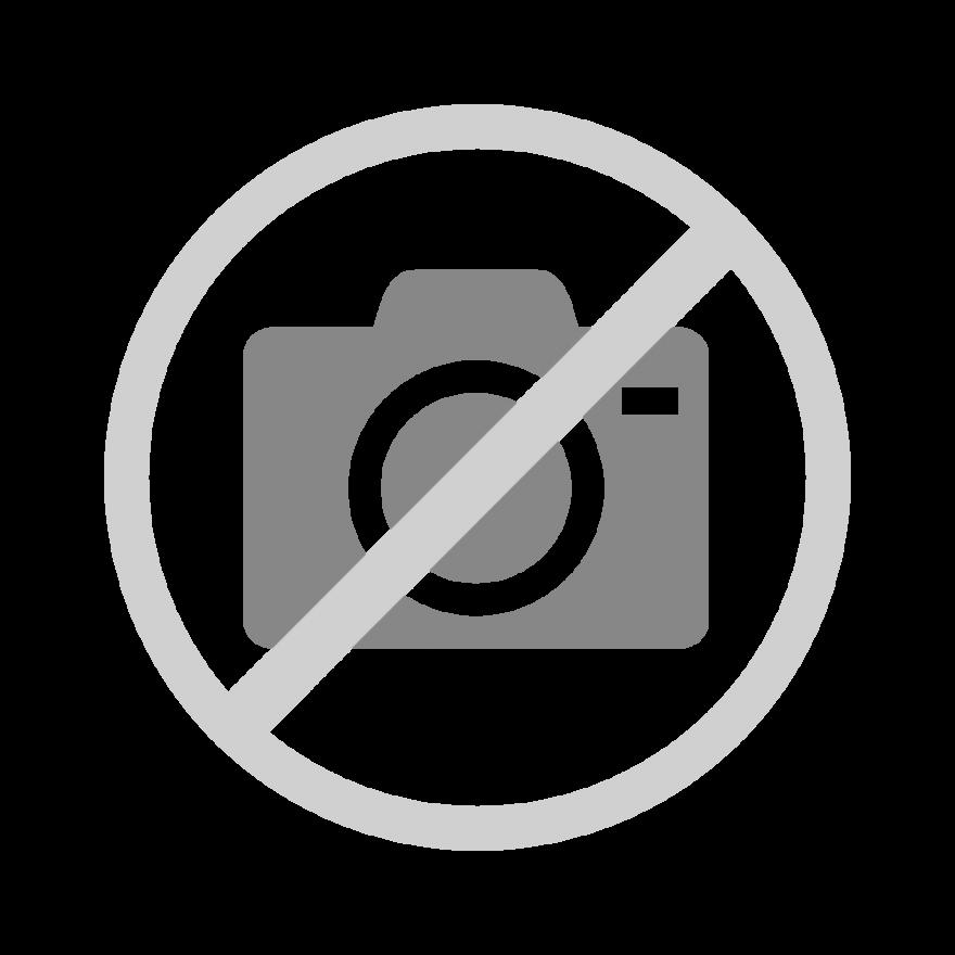 Champions League Mp3 Download: FC Bayern Championsleague